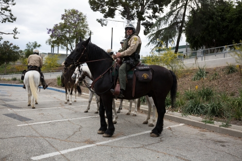 Mounted police wait in the parking lot outside of East Los Angeles College for protesters and attendees to leave. May 5, 2016